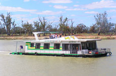 Green and Gold Houseboats Waikerie